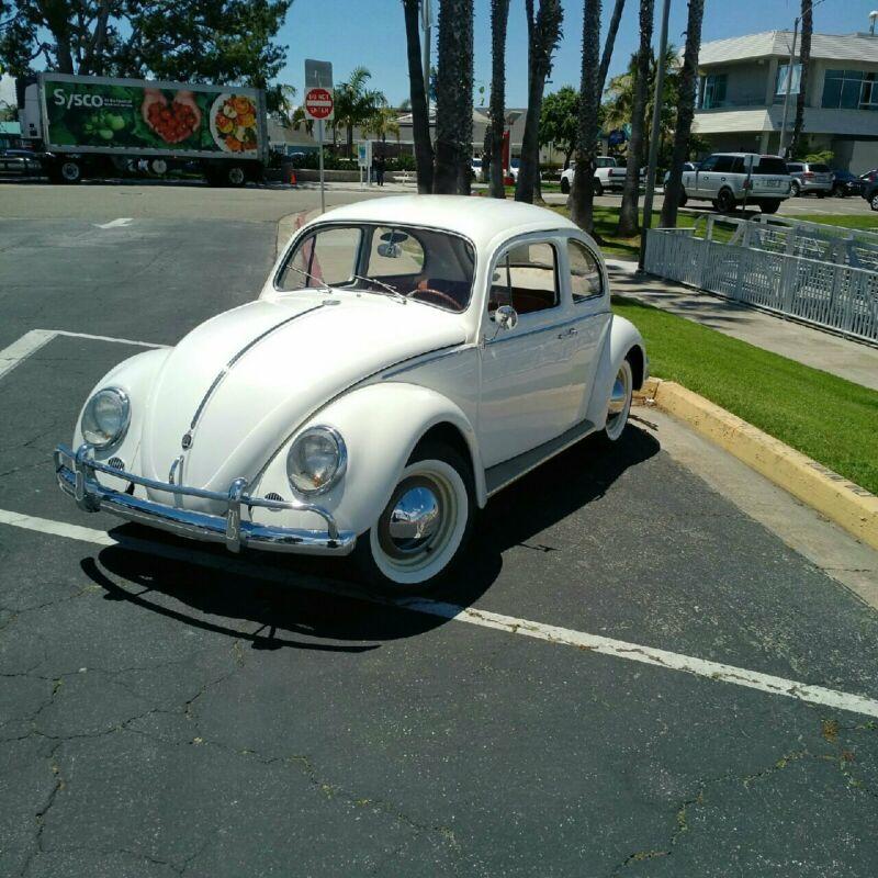 4542809-1962-volkswagen-beetle-classic