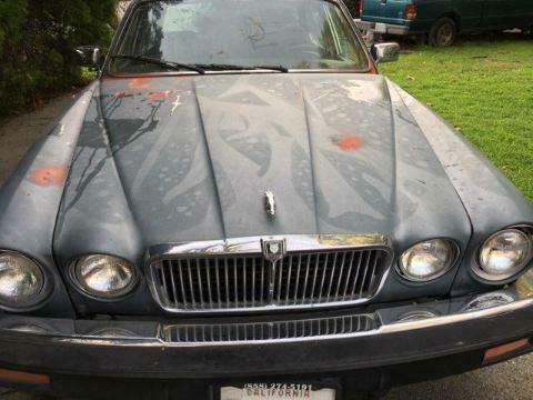 SAJJAVLN4QC448716-1986-jaguar-xj6