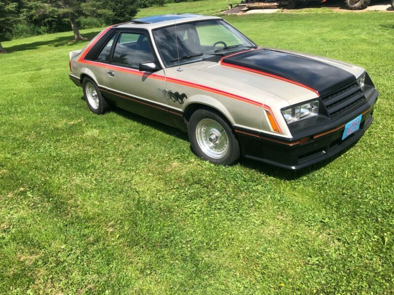 9R03W480492-1979-ford-mustang